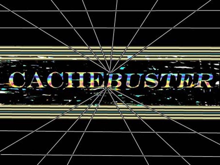 cachebuster4big