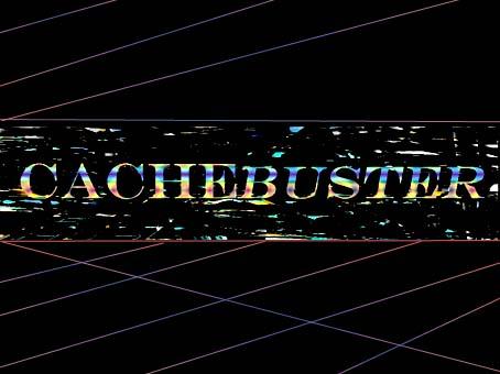 cachebuster2