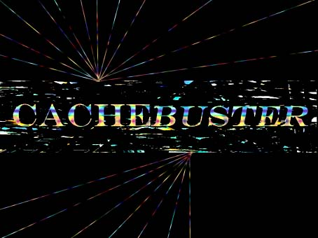 cachebuster3